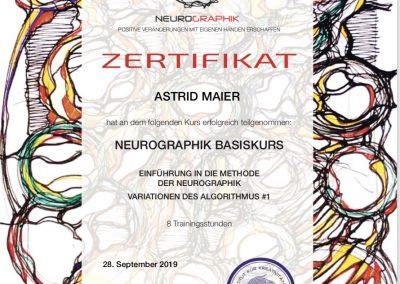 Neurographik Basiskurs